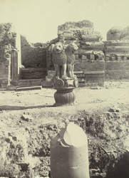 [Top of broken pillar in foreground with the famous Sarnath lion capital standing on the ground beyond.]